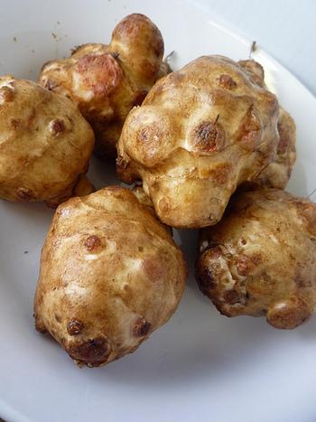 美味しい菊芋の見た目は、ころんとした丸みがありよく太っています。また触った時にしなびた感じで柔らかいものは鮮度が落ちてきています。実の硬い締まったものをチョイスしてくださいね。