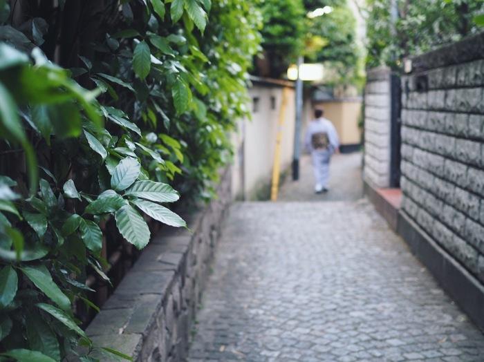 大人の街「神楽坂」で楽しめるイタリアンランチをご紹介しました。和の趣が残る神楽坂にも、イタリアンはすっかり馴染んでいます。お昼もちょっと贅沢に神楽坂でイタリアンランチを楽しんでみませんか?