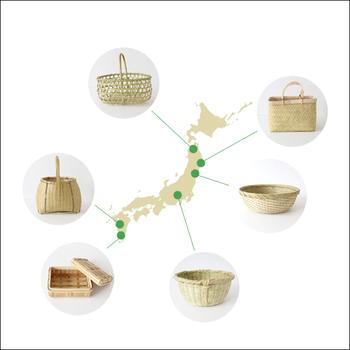 竹は日本中で採れる素材ですが、実は種類がいろいろあり、性質が異なります。それぞれの特徴を知っていれば、アイテム選びがもっと楽しくなりますよ。