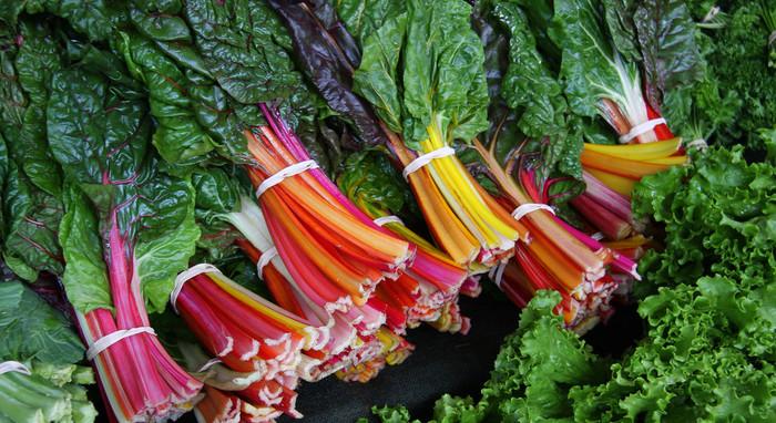 """スイスチャードはほうれんそうと同じアカザ科の野菜で、暑さ寒さに強く一年中作れることから和名では""""不断草""""と呼ばれています。育成がしやすいだけではなく西洋種は茎の部分が赤、オレンジ、黄色などカラフルになり、見た目も楽しい野菜として注目されています。"""
