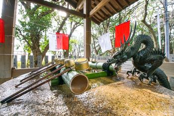 保久良神社の手水舎には、龍もいます。