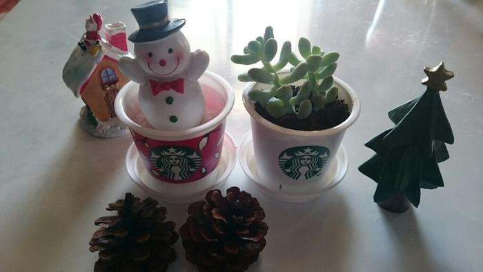 雪だるまがちょこんと入っているのも可愛いですね。植物+小物を使って、スタバプリンのカップを再利用しちゃいましょう!