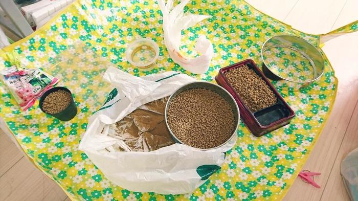 多肉植物の基本の土となるのが、「赤玉土」「鹿沼土」「軽石」などです。そこに、プラスαするのが、広葉樹の落ち葉を腐熟させた「腐葉土」と呼ばれるもの。 多肉植物の基本的な土の配合は、〈小粒の赤玉土3:小粒鹿沼土3:腐葉土4〉の割合です。  慣れてきたら、植物の状態や育てる環境によって市販の土とブレンドして使ってあげてもいいですね。