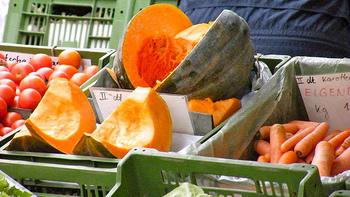 かぼちゃやごぼう、にんじんなどの硬い野菜は、自然と体を温めてくれます。逆にきゅうりやトマト、なすなどの水分の多い野菜や生野菜は体を冷やす効果が。いずれにせよ、野菜は火を通して食べるのがおすすめです!