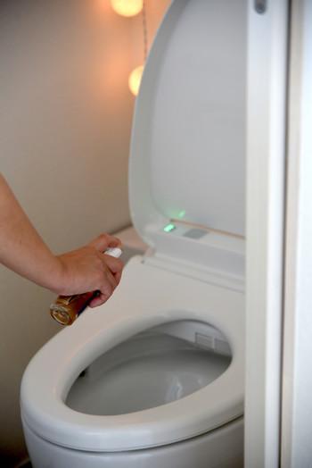 お部屋のエアスプレーとして、お水に数滴入れ混ぜるだけ。シュッシュッとした瞬間ミントの香りが広がります。トイレにも♪