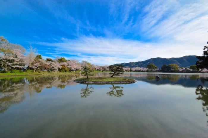 """中国の「洞庭湖」を模して造られたこの池には、「天神島」「菊が島」「庭湖石」があり、この""""二島一石""""の配置は、華道嵯峨御流の基本形に通じています。【画像左が「菊ヶ島」と右が「庭湖石」。】"""