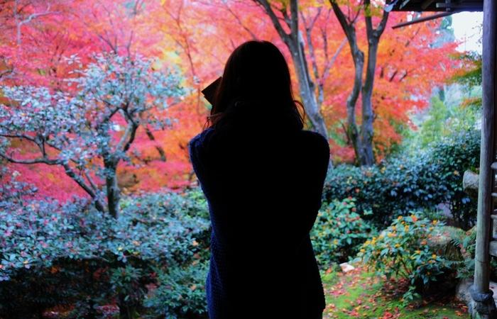 カエデやモミジの紅色に埋め尽くされた庵には、多くの女性たちが自分自身と向き合うために来訪します。