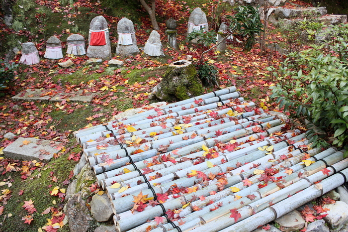 庵といえども山間の境内は広く、モミジやカエデだけでなく、竹林や苔、花々も美しく、ここかしこに石仏も置かれ、場所それぞれで趣きが異なります。