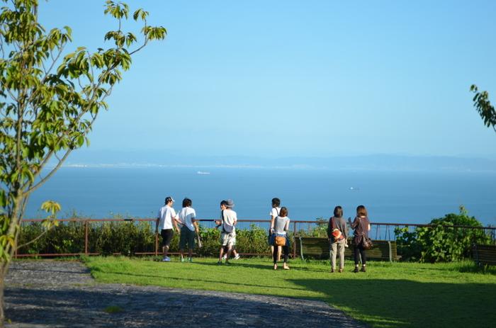 四季折々の植物が楽しめる公園。 海が見渡せるスポットもあり、人気のお散歩コースです。