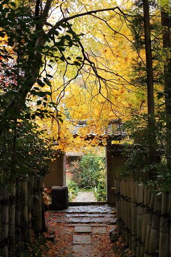 「清涼寺」から「二尊院」へ向かう途中に、ひっそりと佇む「厭離庵(えんりあん)」は、臨済宗天龍寺派の尼寺。