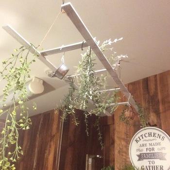 ラダーラック上級者なら、天井に吊るすのもおすすめ◎照明やグリーンを飾って、ワンランク上のお部屋に模様替えしましょう。