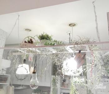まるで雑貨屋さんみたいに、メッシュ状になっているラダー。ラダーの上に小物が飾れるので、さらにお好みのお部屋に仕上げることができます。