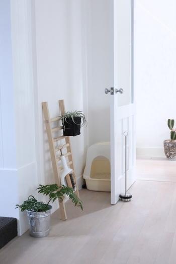 狭いスペースも有効利用できる優れもの。玄関や浴室など、少しのデッドスペースもラダーラックなら置くことができます。