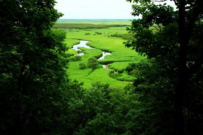 釧路湿原北端に位置するキラコタン岬は、太古から変わらない景観を残している場所として知られています。果てしなく続く草原、蛇行しながら流れる川、はるか彼方に見える地平線が織りなす景色は、絶景そのものです。