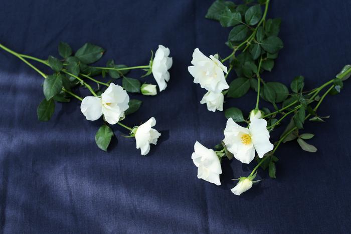 """大切な人に「花のある暮らし」を贈ろう。 花屋が厳選した""""旬の花""""と""""新聞""""を毎月お届け"""