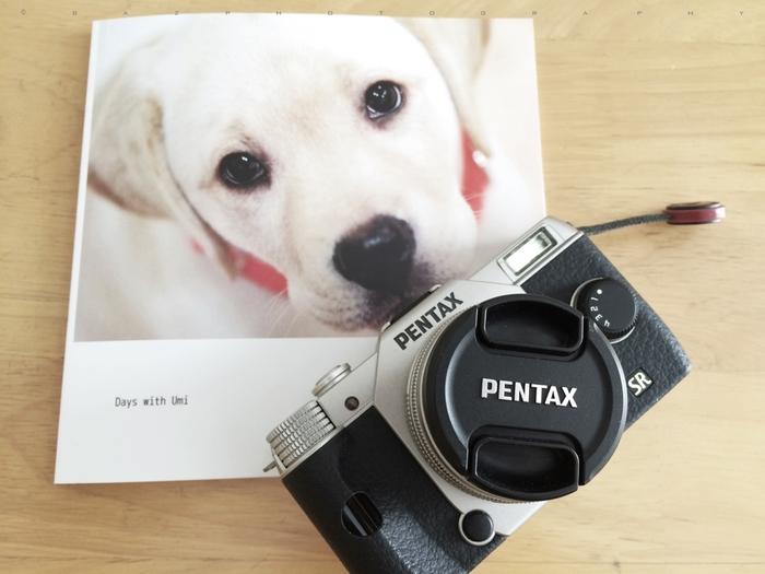 世界にひとつだけのオリジナル・フォトブック。家族の思い出や孫の成長記録、愛犬のキュートなショットなど、記憶にも形にも残るプレゼントになります。