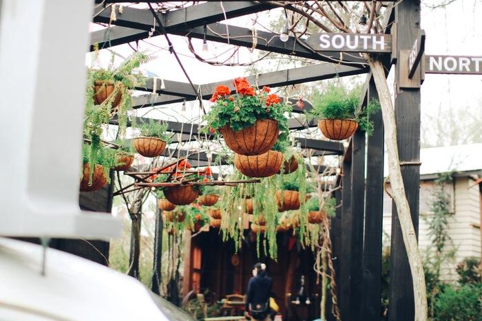 創意工夫のこもったセンスの良い植物の飾り方は、さすが。 確かに、保管用にしておくだけではもったいないほど素敵!