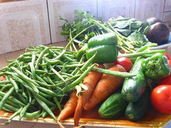 冷蔵庫にある野菜などでつくる「手作りふりかけ」なら、塩加減なども好みの味に調整できますし、保存料などの添加物も入らないので、小さなお子さんのいるおうちでも、安心してモリモリ食べられますね。