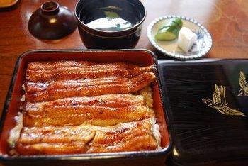 口いっぱいに鰻の美味しさが広がるうな重や、新鮮で素材がよくないとできない白焼き、肝吸いなどなど、とっても美味しい鰻を堪能できますよ。