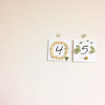 花や草をばらばらにして、紙に貼り付けてポストカードのように壁に飾っても◎