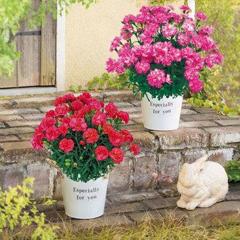 いつもブーケやアレンジメントを贈っているという方は、鉢花をチョイスしてみては。カーネーションなど多年生の植物ならガーデニング好きなお母さんにぴったり。おしゃれな鉢は、エクステリアとしてお庭を素敵に演出してくれそう。 眺めるたびに贈られたことを思い出してもらえば、嬉しい気持ちもずっと続きますね。