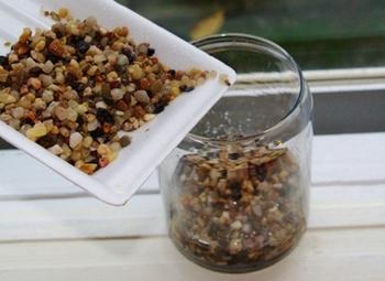 砂利もしくはソイルを、水草を植えることができる厚さ(3~5cm程度)に敷きます。市販のバクテリアや種砂(状態の良い水槽等の底床)を底床に混合すると、バクテリアが水質を浄化してくれます。