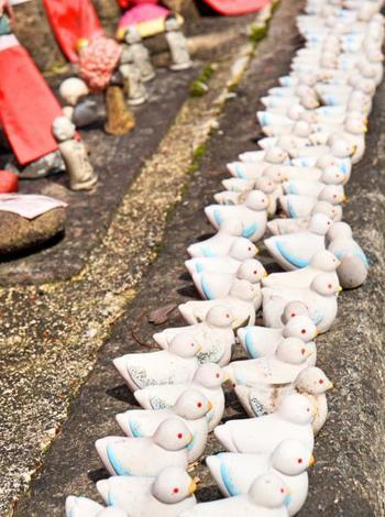 境内にいつもいる鳩たちをモチーフにした京都の六角堂の〈鳩みくじ〉。 鳩は幸福のシンボル。素焼きのかわいらしい鳩が止まり木のようにおみくじを持っています。
