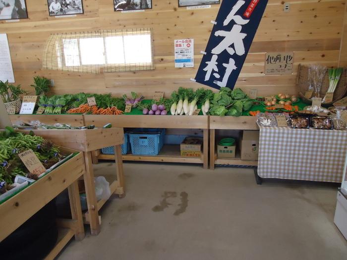 直売所では毎日採れたての新鮮野菜が並びます。