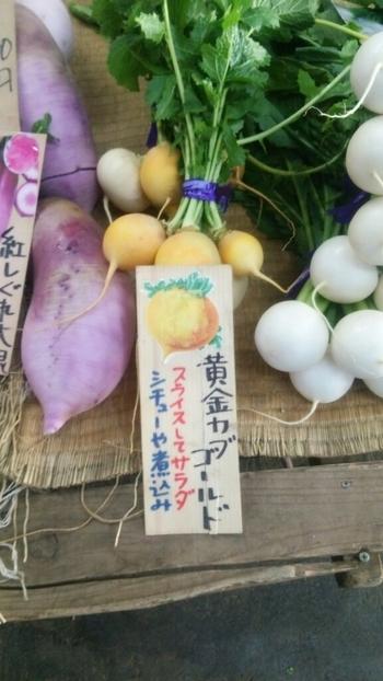 普通のスーパーではあまり見かけないお野菜も簡単に手に入るんです。