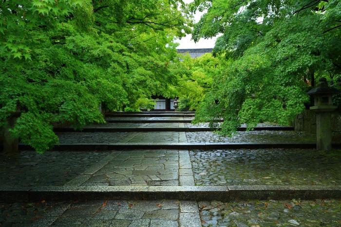 本堂に向かって緩やかに伸びる、石段の参道が印象的な「真如堂」は、天台宗の寺院です。1万2000坪にも及ぶ広大な境内には、本堂や三重塔、鐘楼等が並びます。