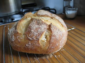 外側がバリバリとした食感のパンを「ハード系」と呼びます。シンプルな材料で作られているパンが多く、食事やワインのお供に合うと人気が高い種類です。