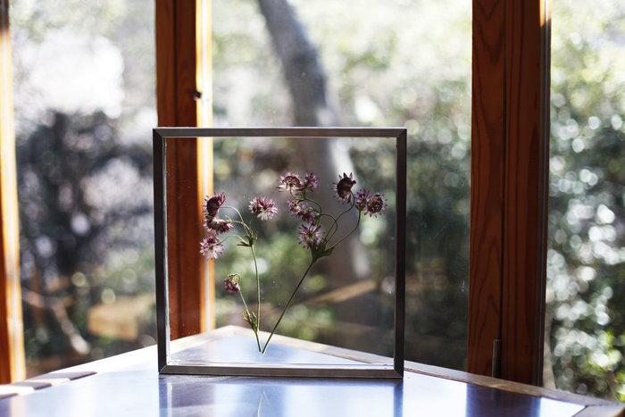 窓から差し込む優しい光と小さく可憐な花は、眺めているだけで癒されます♪