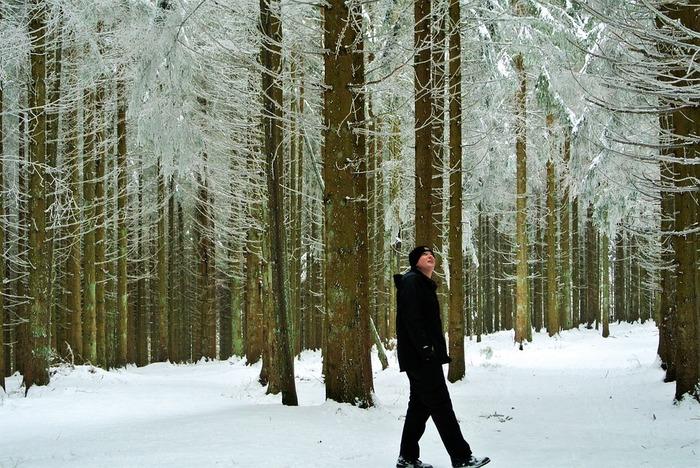 PP社モブラー社が使用する大部分の木材は、デンマークとドイツの継続可能な森林から供給されています。