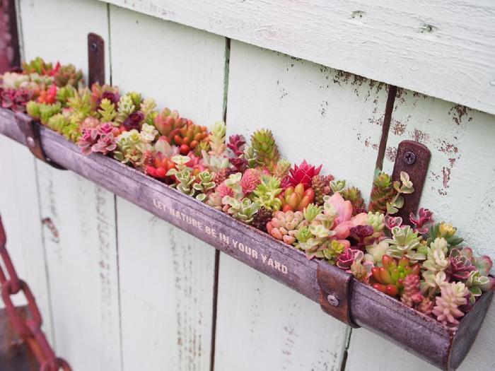 これは雨どい風のDIYプランター。軒先に吊り下げておけば、外に出ずとも野菜が摘めて、部屋にいながら窓に季節の花を愛でられます。なんという素晴らしいアイディア!日当たり良好で植物もぐんぐん育ちそうです。