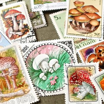 季節の切手や記念切手、キャラクター切手など、特別なデザインの切手を手に入れることができます。相手が喜んでくれるデザインや、自分のセンスで選んだものなど、小さなところにも気を遣ってみるのも手紙の楽しみのひとつです。
