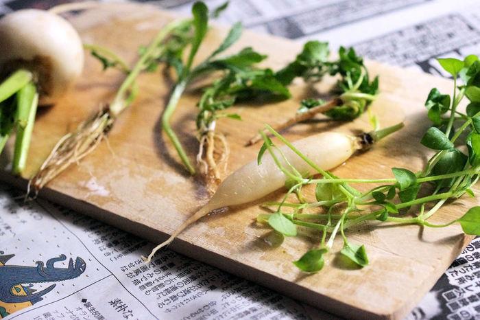 七草の種類をなかなか覚えられない人も多いかと思います。春の七草は、「セリ・ナズナ・ゴギョウ・ハコベラ・ホトケノザ・スズナ・スズシロ」です。この7種類の野菜を使って作られるお粥が「七草粥」です。邪気を払って万病を除くことを願って食べられています。