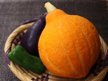 皮ごと生で食べられる珍しいカボチャです。果実は鮮やかなレモン色で、歯ざわりもよく、薄くスライスしてサラダや浅漬けに食べるのが主流です。