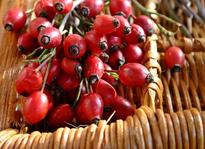 ローズヒップティーには、水分が少なく乾きやすいドッグローズの実を使います。ドッグローズの実が真っ赤に熟したら、枝からたくさん収穫してきれいに洗います。 水分を拭き取ったら2つに切り、種をていねいに1つ1つ取り除きましょう。