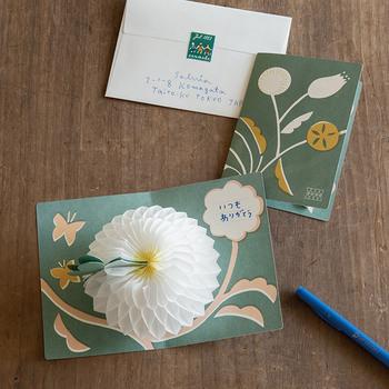 作り手のこだわりが詰まった素敵な雑貨たちを取り扱っている「Salvia(サルビア)」。2000年に、グラフィックデザイナー・セキユリヲさんによって立ち上げられた活動体です。