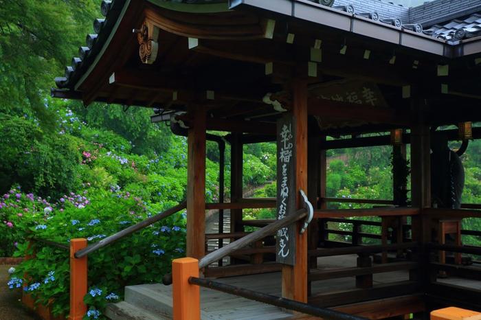 """杉を伐採して開いたあじさい苑には、遊歩道が完備され、散策しながら爽快な眺めを味わうことが出来ます。 【画像の建物は、""""自分の以外の幸せを願う""""「幸福地蔵」。「善峯寺」の人気スポットです。】"""