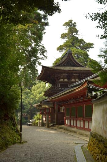 日本最古の神社の一つとして知られている石上神社の周囲は、豊かな森が鬱蒼と生い茂っています。しんと静かな深緑の森に包まれた境内を歩いていると、まるで古代日本神話に出てくる神社へ迷い込んだかのような錯覚を感じます。