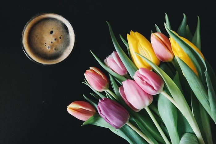 例えば、春にはチューリップが。おいしい空気ときれいな水からたくさんの栄養をもらっているのでしょうね!