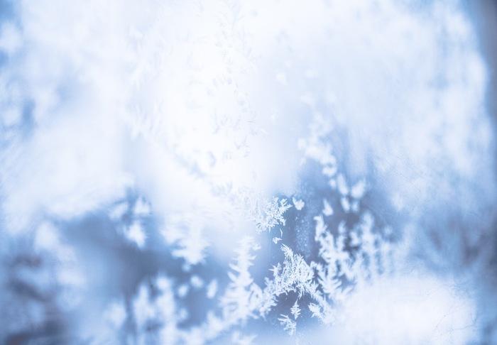 雪化粧をしたお庭も、筆舌に尽くしがたいことは疑いようもありません。