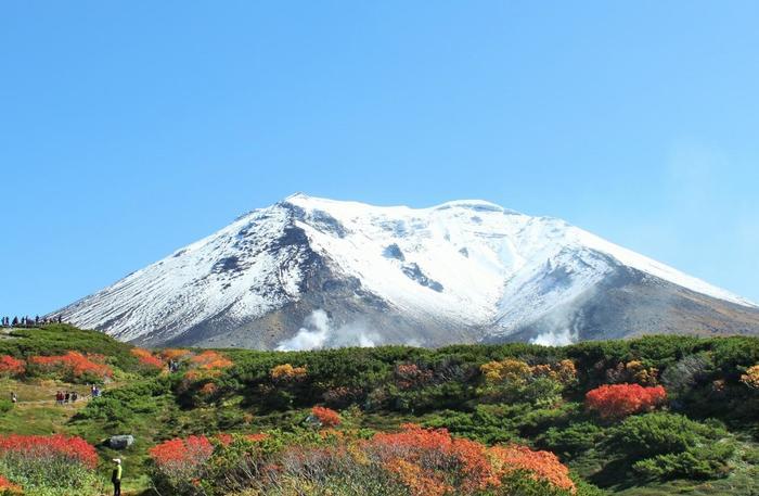 旭岳は日本一紅葉が始まるのが早いことでも有名です。