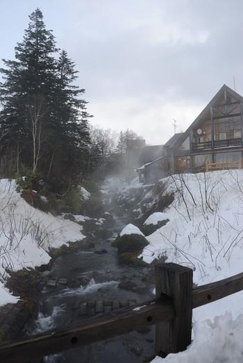 深い原生林の中から自然に湧き出た湯は、正に大雪山の恵み。天然かけ流しの温泉を堪能できます。