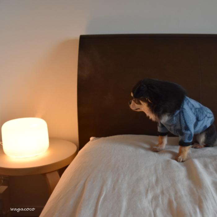 寝室に置くと加湿器代わりにも!夜はリラックスできる香りを焚いて、朝はフレッシュな香りを焚いて…ちょっと早起きしたくなりますね。
