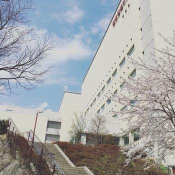 駅の目の前にある昭和音楽大学の南校舎内には「ユリホール」というコンサートホールと、日本ではめずらしい、ヨーロッパの伝統的なオペラハウスのような馬蹄型の劇場「テアトロ・ジーリオ・ショウワ」があり、地域のイベントや公演のある日は多くの人でにぎわいます。