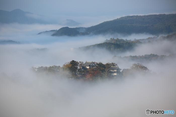 【高梁の雲海に浮かぶ山城「備中松山城」。】