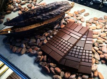 店内で「カカオ豆からのチョコレート作り体験」ができます。外部会場でワークショップも行われることもありますので、興味のある方はホームページをチェックしてみてください。
