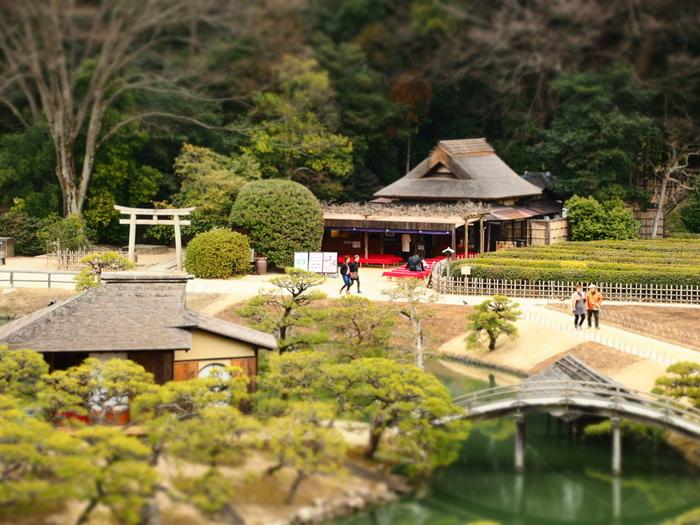 岡山後楽園は、総面積14万㎡にも及ぶ広大な回遊式庭園。芝生が敷かれた敷地には、池や築山、茶室や梅林等などが点在し、園路や水路で結ばれています。巡り歩けば、様々な表情の庭の景色を眺めることができます。